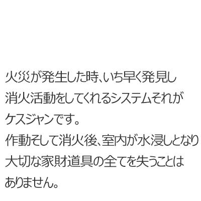 ケスジャン 天井吊下型 紹介